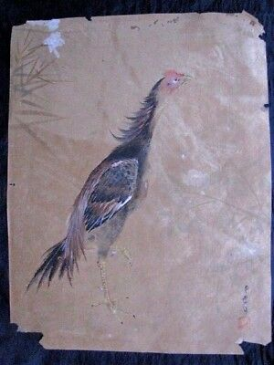 Very Early Edo Period Fine Japanese Watercolor Painting Of Rooster Artist Signed