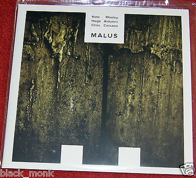 "Nate Wooley Hugo Antunes Chris Corsano ""malus"" Nobusiness Lp New!"