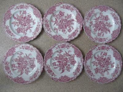 6 x Vintage Crown Ducal Bristol Pink (White) Scalloped Dinner Steak Plates 9.5""