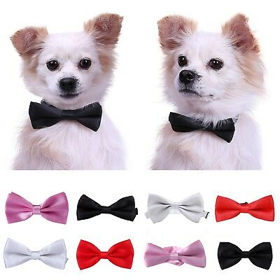Adjustable Pet Bowtie Collar Formal Bow Tie Dog Puppy Cat Kitty Accessory