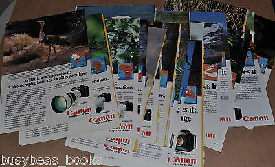 1984-88 CANON Camera advertisements x36, endangered wildlife 36 different ads