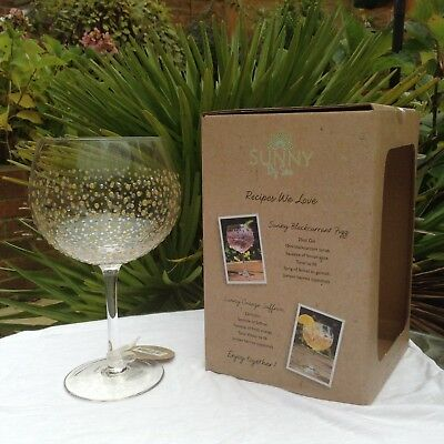 Sunny By Sue Hand Painted Gin & Tonic Large Gold Silver Balloon Glass Boxed 003