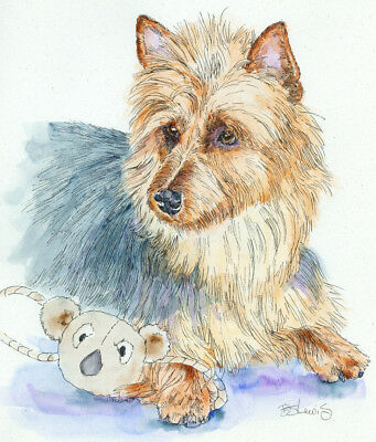 AUSTRALIAN TERRIER Original Watercolor on Ink Print Matted 11x14 Ready to Frame