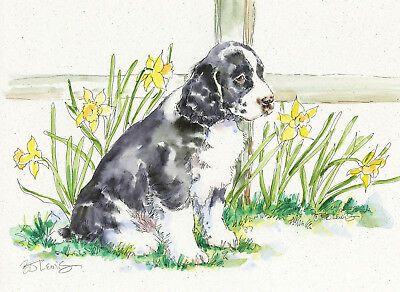 SPRINGER SPANIEL Original Watercolor on Ink Print Matted 11x14 Ready2Fra