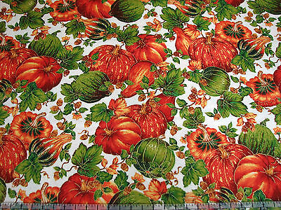 3 Yards Quilt Cotton Fabric- Quilting Treasures Abundance Met Pumpkin Gourd Pack
