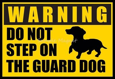 "DACHSHUND Warning Do Not Step On the Guard Dog Funny Fridge Magnet 4.25"" x  3"""