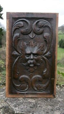 SUPERB 19thc GOTHIC OAK CARVED PANEL OF THE GREEN MAN  C.1860