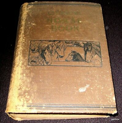 Gleason's Horse Book 1892 King Of Horse Trainers Illustrated History & Breeding