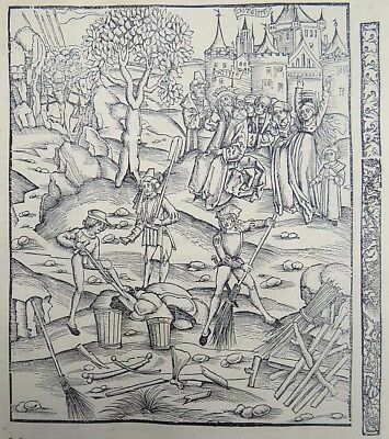 1502 Grüninger Master original INCUNABULA WOODCUT The Aftermath of Battle
