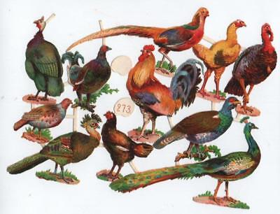 Victorian Die Cut Relief Scrap Sheet. Fowl  Pheasant Turkey Chicken et al #273