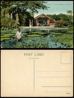 India Old Postcard Waterlily Pond Scene in Victoria Gardens Bombay Elephant Shed