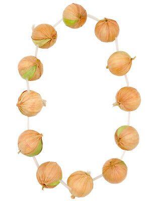 French Red Onion Garland Fancy Dress Accessory Novelty Food Necklace France Kids