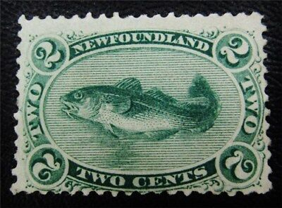 nystamps Canada NewFoundland Stamp # 24 Mint OG NH $88