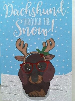 NEW Box Of 16 Dachshund Christmas Cards Doxie Through The Snow Dog