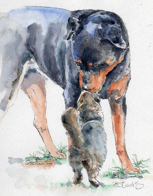 ROTTWEILER w KITTY Original Watercolor on Ink Print Matted 11x14 Ready to Frame