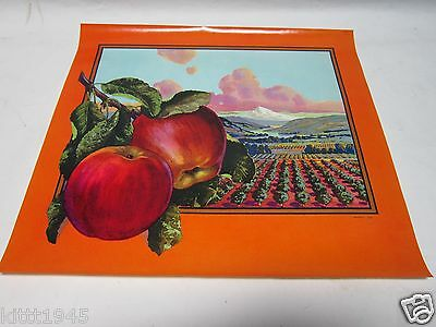 5 Apple Box Crate Paper Label Schmidt Litho San Francisco Sebastopol Ca. Vintage