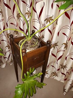 Antique Victorian/Edwardian plant stand and plant in Chinese ornate pot.