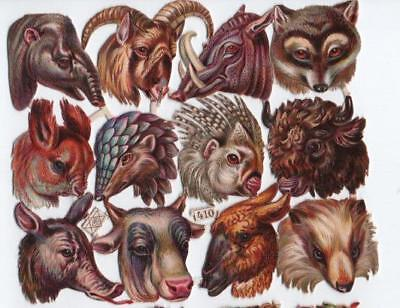 Victorian Die Cut Relief Scrap Sheet. Animal Heads. Pub'd Priester & Eyck #410