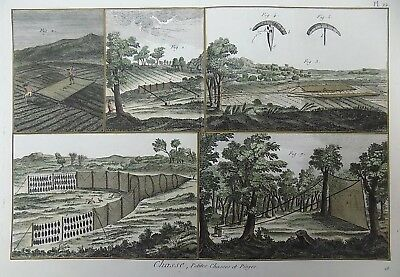 1793 Panckoucke - HUNTING Birds - hand coloured DOUBLE FOLIO original