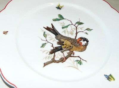ANTIQUE C1900 FRENCH Plate BIRD Nature E. GALLEE #6