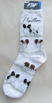 4Bare Adult Size PAPILLON Poses Adult Socks size Medium 6-11