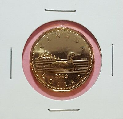 Canada 2003 New Effigy (Uncrowned) Loonie BU UNC From Mint Roll!!
