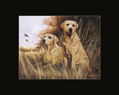 New Labrador Retriever Pair Matted Print