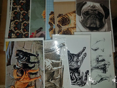 Lot B - 29 Pug dog Variety Greeting Cards envelopes & cello sleeves Blank Inside