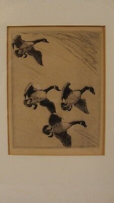 "Antique 1920's Signed Frederick Farley ""Honk Home "" Geese Etching"