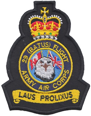 No. 29 (BATUS) Flight British Army Air Corps AAC Crest MOD Embroidered Patch
