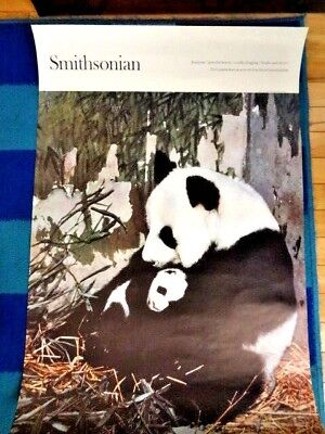 Hard To Find Very Rare Vintage Advertising Poster for SMITHSONIAN Panda & Baby