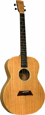 Ashbury AT-40 TENOR GUITAR, Flame Oak top & body. Irish/Celtic. From Hobgoblin