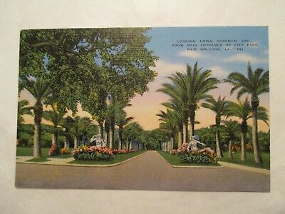 Looking down Anseman Ave New Orleans Louisiana LA Postcard