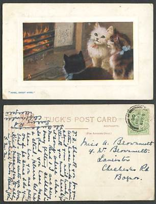 Cats Kittens Cat, Home Sweet Home, Tuck's Oilette In Pussyland 1908 Old Postcard