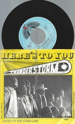 """7""""  Thunderstorm – Here's To You"""