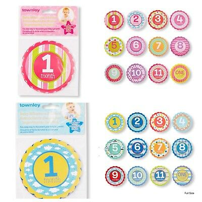 NEW Townley Baby Milestone First Year Stickers 12 Month Growth Chart Photo Opt