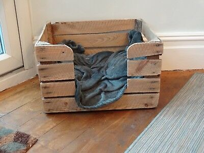 Retro/vintage Fruit Crate Cat/small Dog Bed