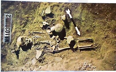 1950s POSTCARD SINAGUA INDIAN BURIAL, INDIAN GIRL & POSSESSIONS