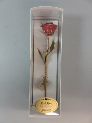 Real Red Rose Preserved & Trimmed in 24K Gold - HAZ