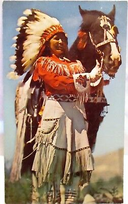 1950s POSTCARD WESTERN INDIAN MAIDEN,WITH HORSE