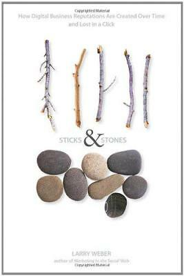 Sticks and Stones: How Digital Business Reputations Are Created Over Time and Lo