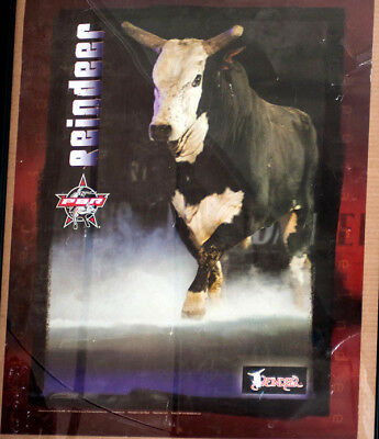 "RODEO POSTER - PBR Bull-of-the-Year, ""Reindeer"" , PBR POSTER; PRCA Bulls"