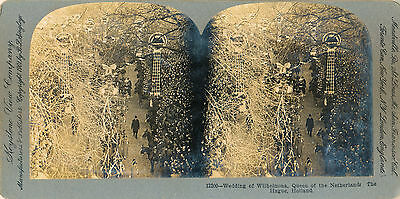 1901 Queen Wilhelmina Wedding, The Hague, Holland Keystone Stereoview