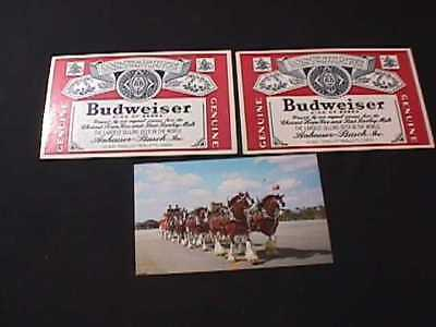 Budweiser Clydesdale 8 Horse Hitch & 2 Budweiser Label Postcards