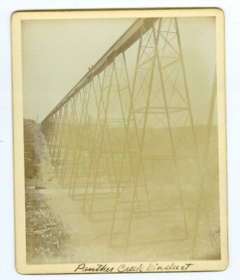 B8741~1894 Wilkes Barre & Eastern Railroad Panther Creek Viaduct Construction