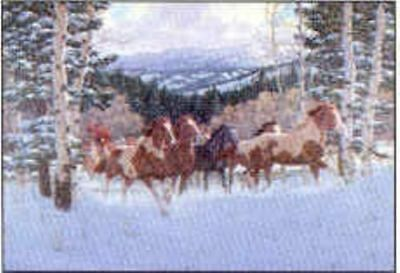 Xmas Cards Herd of PAINT HORSES Snow Scene Xmas Cards 10 per box