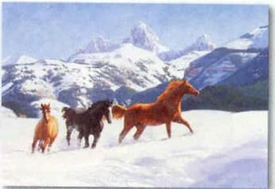 Xmas Cards Three Galloping HORSES in Snow Holiday Cards 10 per box