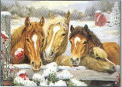 Xmas Cards PONIES looking over a fence Holiday Cards 10 per box