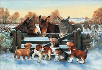 Xmas Cards Donkeys and Puppies Holiday Cards 10 per box made in USA