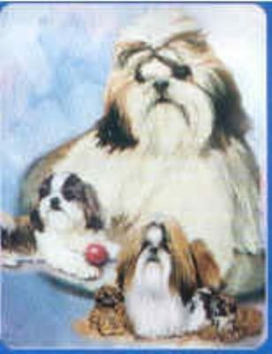 Dog Breed Playing Cards SHIH TZU CLEARANCE SALE
